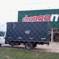 Chango-carro-policial